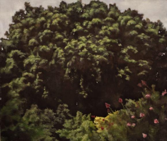 Trees 4 - Oil on canvas IMG_5052.JPG